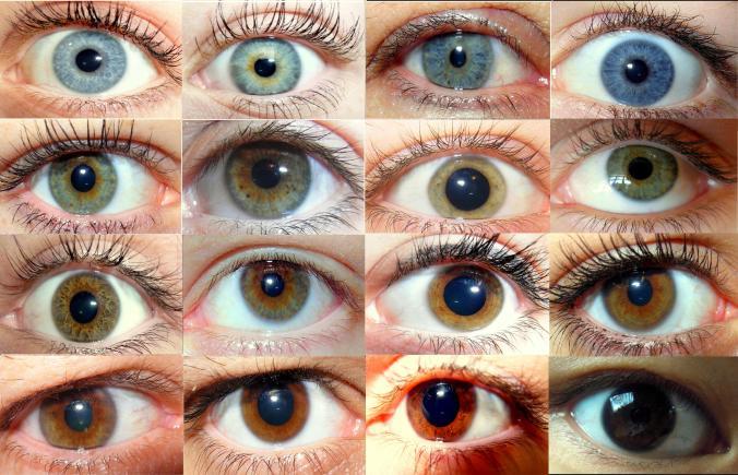 Farbverlauf_Augenfarben