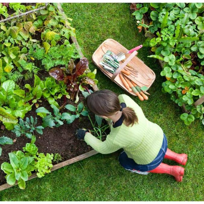 Por si te da la loquera de poner un huerto en tu jardín
